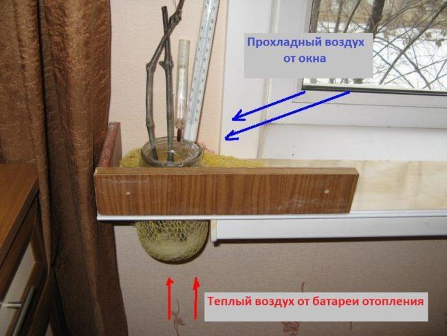 Самодельный кильчеватель для укоренения черенков винограда на подоконнике