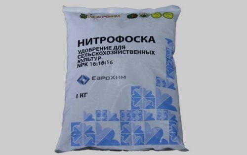 Пакет весом в один килограмм с Нитрофоской для удобрения посадок винограда