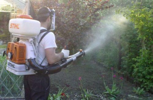 Опрыскивание промышленного виноградника от заболеваний и вредителей