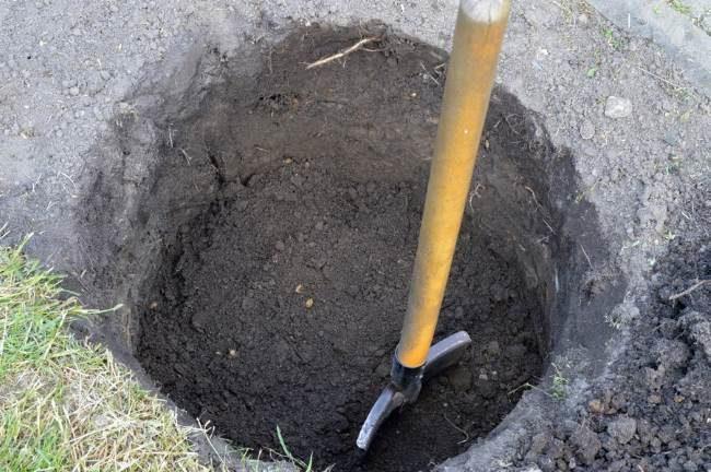 Посадочная яма для винограда с подготовленным грунтом и штыковая лопата