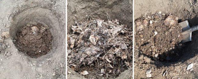 Подготовка питательного грунта в посадочной яме для винограда