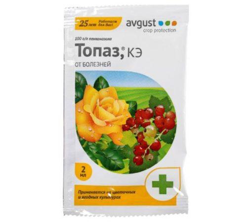 Пакет с препаратом для опрыскивания винограда от вредителей и заболеваний