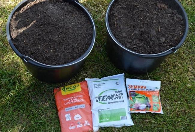 Два ведра с плодородной землей и минеральные удобрения для подготовки посадочной ямы