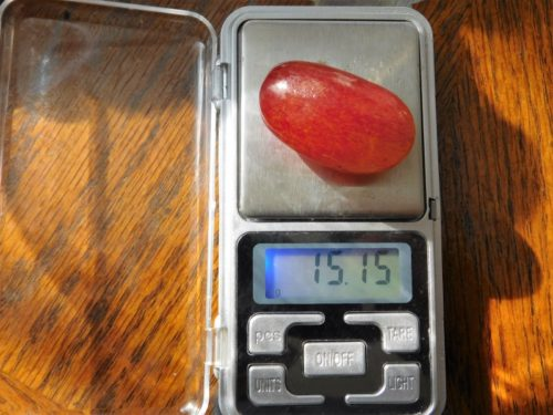 Масса средней по величине ягоды винограда сорта Виктор