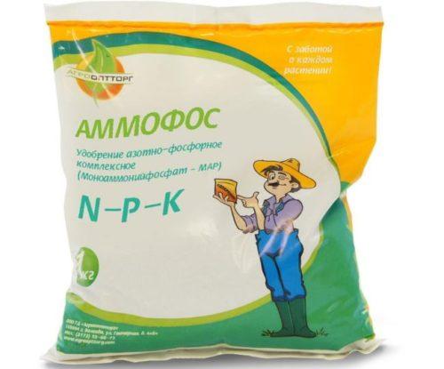 Пластиковый пакет с аммофосом весом в один килограмм для внесения под кусты черешни