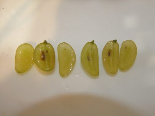 Разрезанные половинки виноградин сорта Голд Фингер