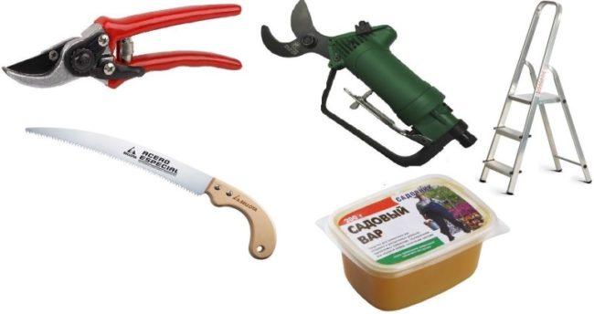 Инструменты для обрезки черешни: секатор, сучкорез, стремянка, садовая пила и вар для замазывания срезов