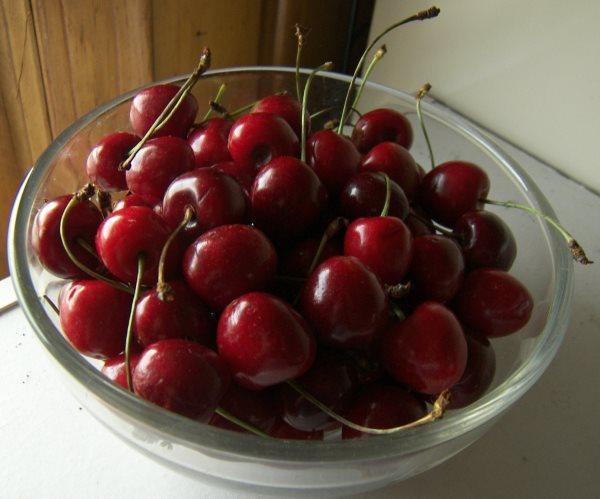 Спелые ягоды колоновидной черешни сорта Сэм в стеклянной чашке