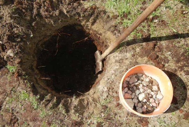 Посадочная яма для черешни и пластиковая емкость с битым камнем для дренажного слоя