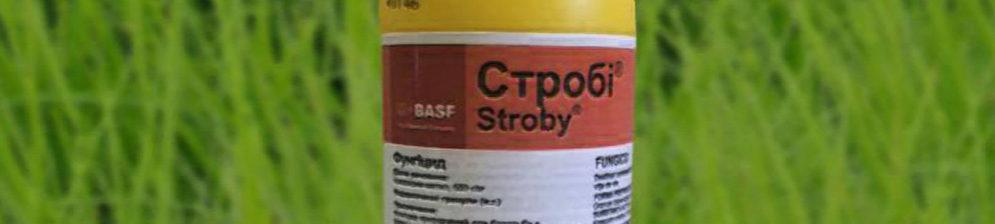 Фунгицид Строби вблизи упаковка пластиковая