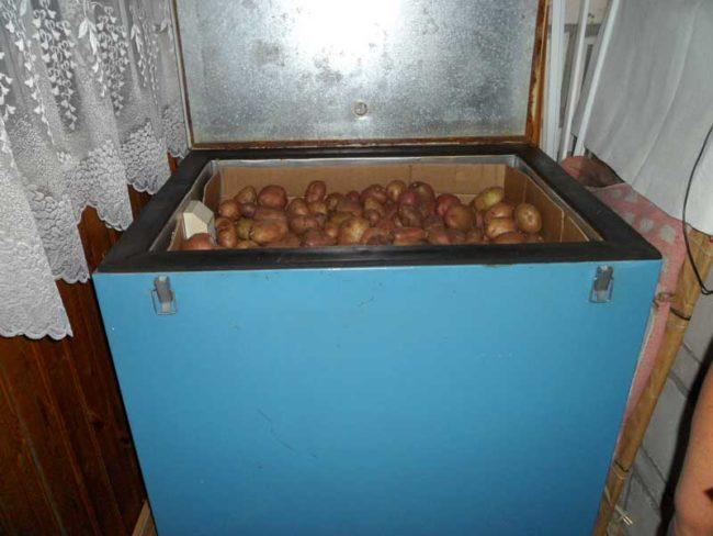 Термошкаф заводского изготовления для сохранения картофеля в условиях квартиры