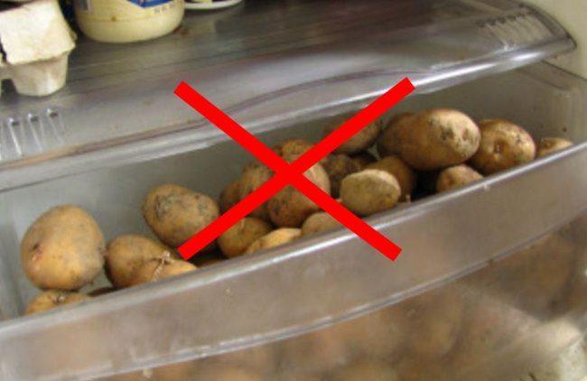 Нижний отсек домашнего холодильника с клубнями картофеля