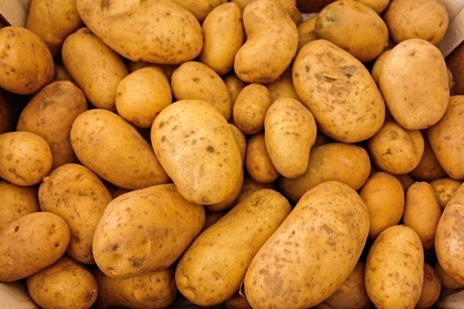 Клубни белого картофеля с небольшими пятнышками на кожице