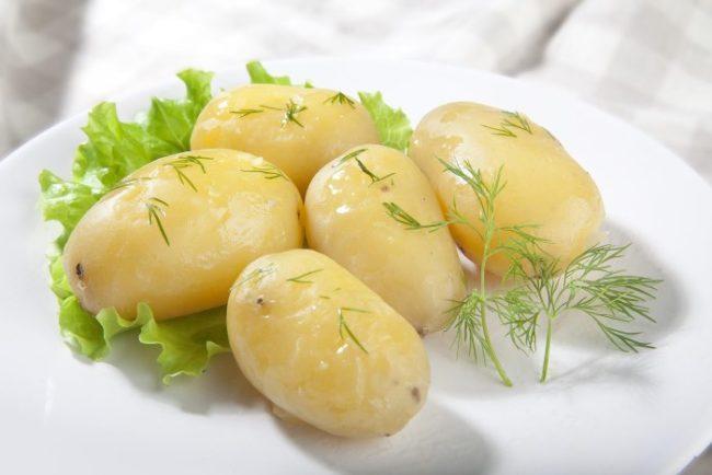 Пять вареных картошин сорта Коломбо на белой тарелке с зеленью