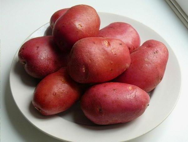 Мытые клубни картошки сорта Рокко на белой тарелке