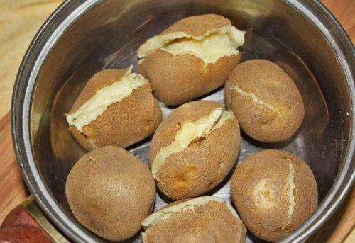 Отварная картошка сорта Киви в чашке