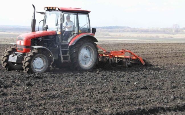 Вспашка поля под столовый картофель трактором в середине осени