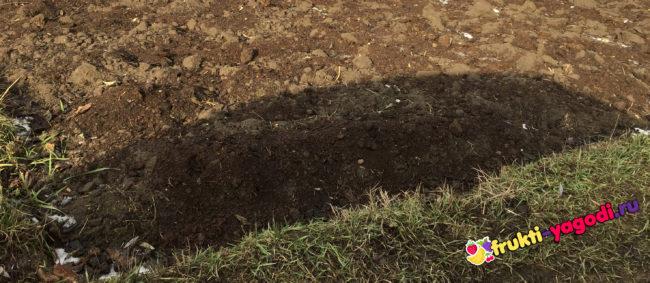 Перекопанная земля и удобренная осенью под посадку весной