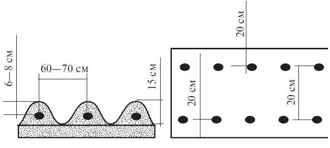 Стандартная схема высадки картофеля на высокие гряды в два ряда