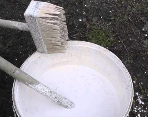 Подготовка известкового раствора для осенней побелки груши