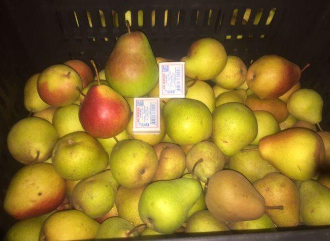 Урожай спелых груш желто-зеленого окраса в пластиковом ящике