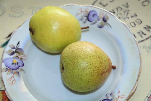 Две спелые груши сорта Чижовская на фарфоровой тарелке с окантовкой