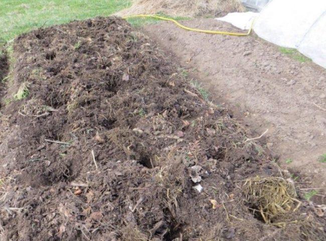 Лунки для посадки картошки на частном огороде