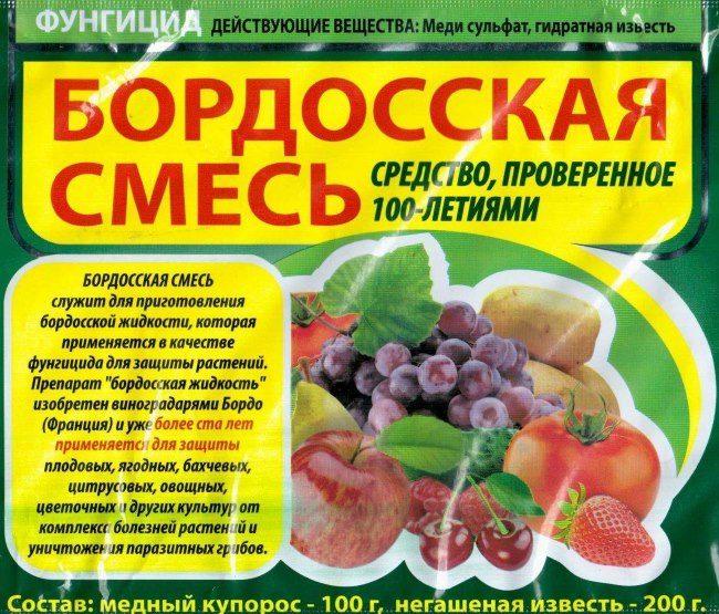Пакет бордосской смеси для опрыскивания груши от грибковых болезней