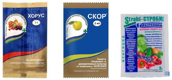Пакеты с препаратами для лечения грибковых заболеваний груши