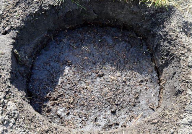 Посадочная яма для груши, наполненная питательным грунтом