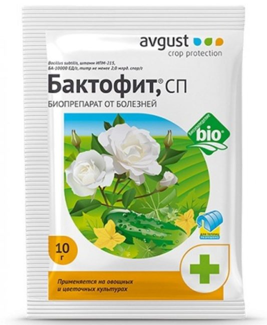 Пакет фунгицида Бактофит для лечения и профилактики болезней помидоры
