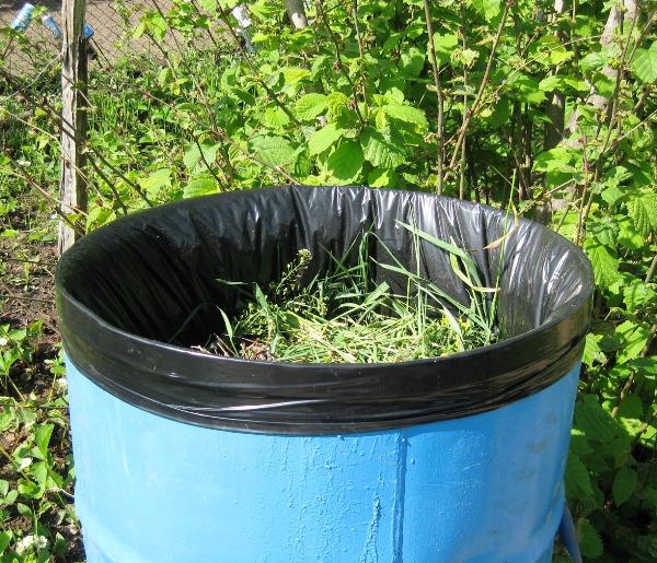 Синяя бочка с настоем травяного удобрения для помидоры