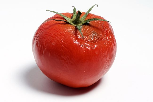 Плод томата с гнилым пятном на красной кожице