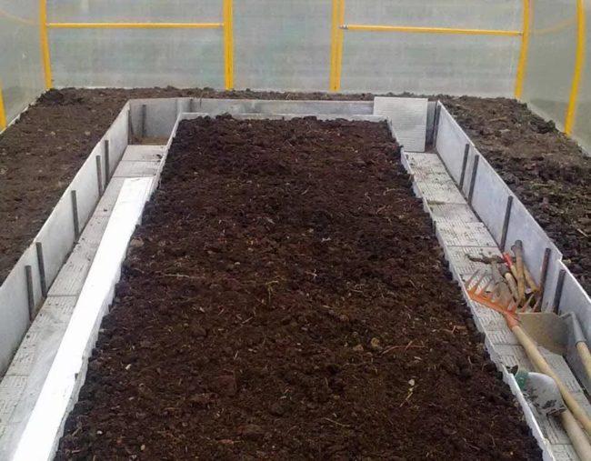 Грядка для выращивания сладких сортов помидоры в теплице