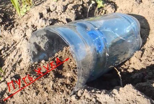 Самодельная ловушка для проволочника из пластиковой бутылки