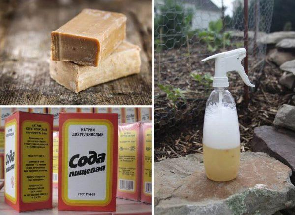 Мыло и сода для приготовления лечебного раствора от мучнистой росы