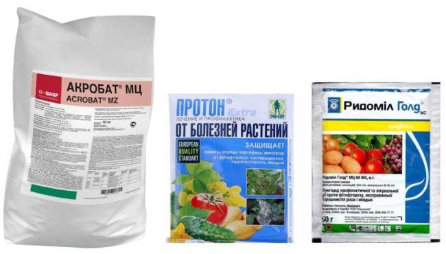 Препараты для лечения фитофторы на помидоре в тепличных условиях