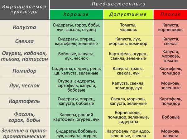 Таблица севооборота с участием помидоры для частного огорода