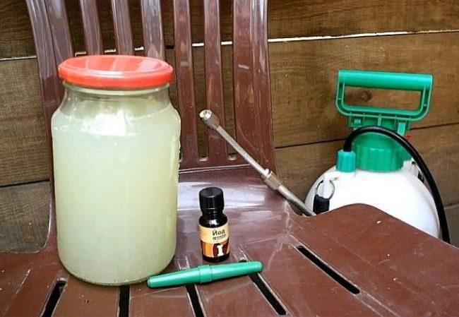 Банка с сывороткой с флакон йода для приготовления подкормки для помидор