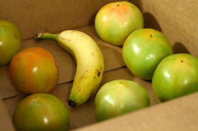 Картонная коробка с желтым бананом и зелеными помидорами