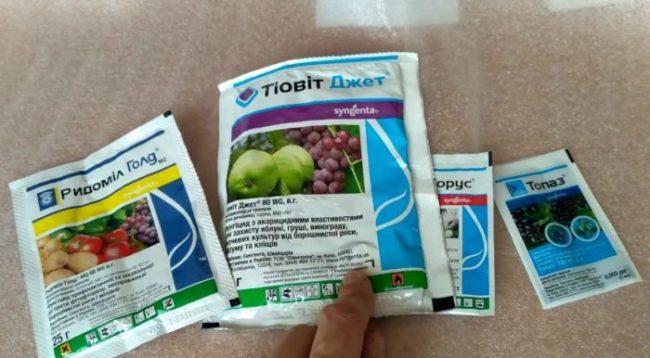 Пакетики с различными фунгицидами для лечения заболеваний помидоры