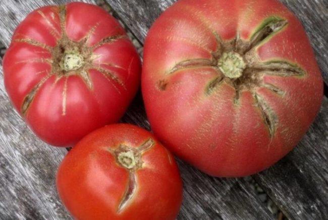 Розовые помидоры с трещинами на кожице и в мякоти плодов