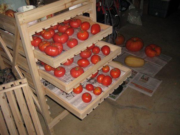 Деревянная стойка с выдвижными ящиками для хранения помидоров в квартире