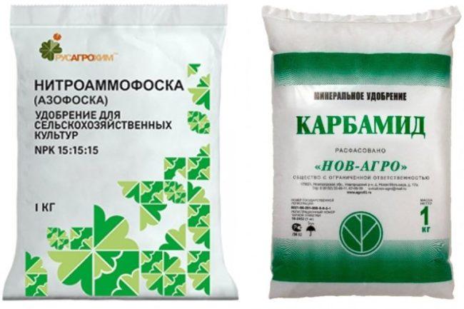 Пакеты с нитрофоской и карбамидом для летней подкормки колоновидных яблонь