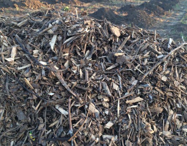 Куча древесной щепы для мульчирования колоновидных яблонь