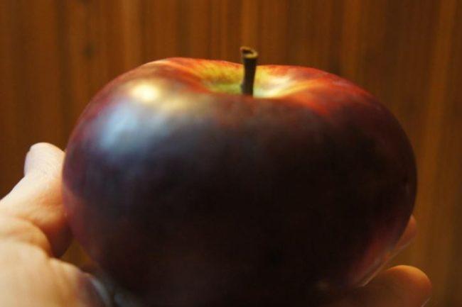 Яблоко сорта Медуница через три недели хранения при комнатной температуре