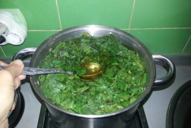 Приготовления настоя из ботвы томатов в домашних условиях