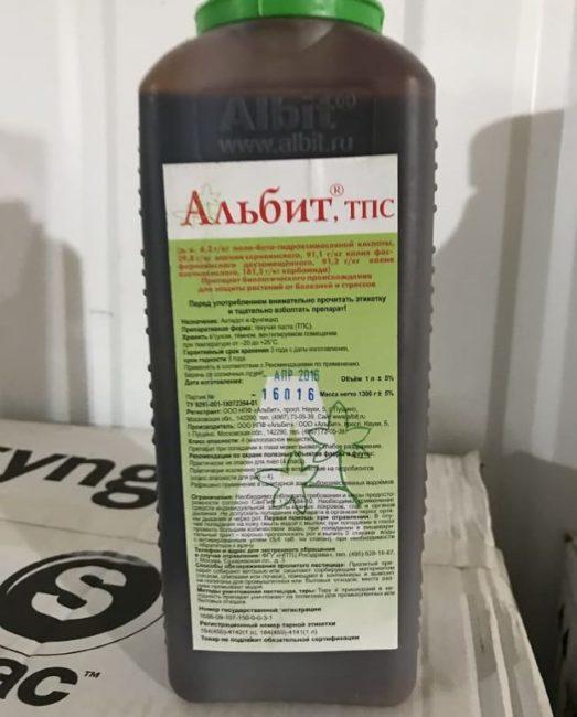 Большой флакон с препаратом Альбит для опрыскивания веток яблони после зимы