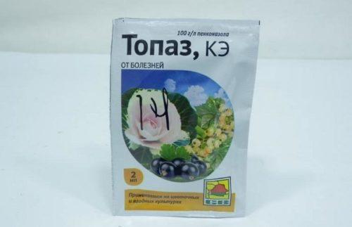 Пакетик с ампулой препарата Топаз для лечения болезней яблони