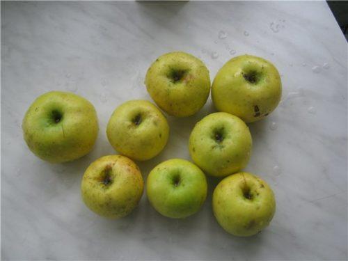 Мытые яблоки с жирной пленкой на кожице при сажистом грибке